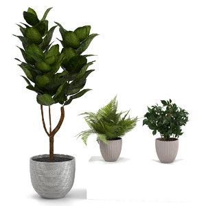 3D indoor plants pots