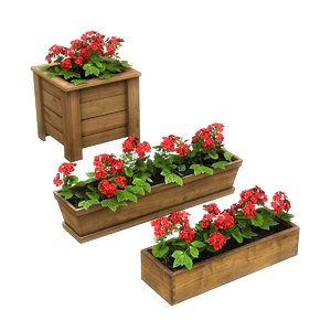 plants potted model