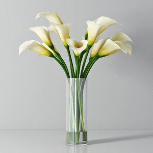 3d white calla lilies model