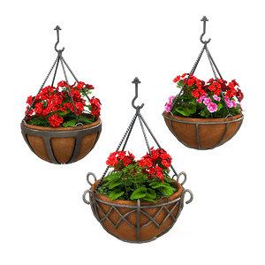 3D hanging potted plants geranium