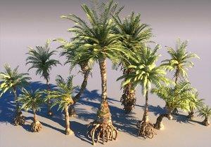 prehistoric plants model
