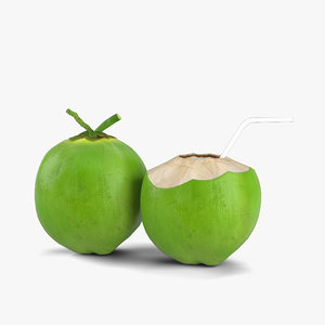 coconut green coco 3D model