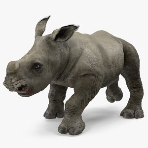 rhino baby walking pose 3D model