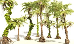 3D prehistoric plants tree model