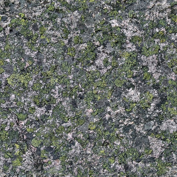 RS117 old mossy stone
