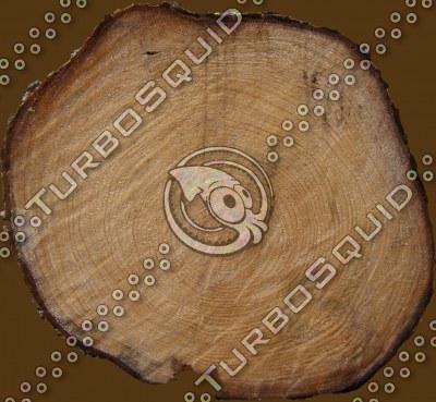 Log Cut.tga
