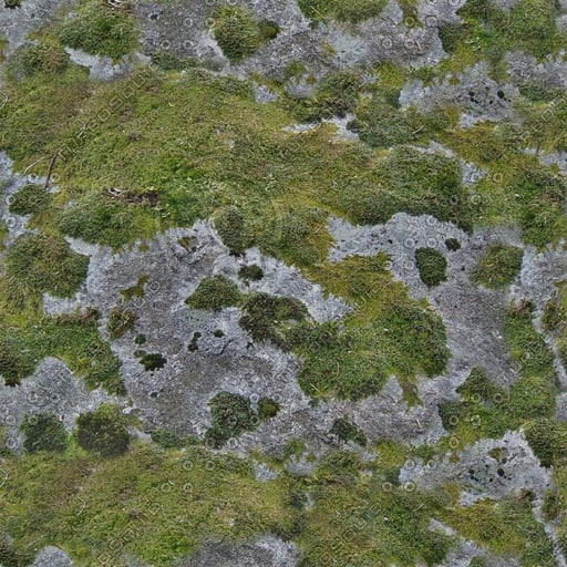 RS084 mossy rock stone texture