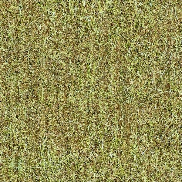 G359 dead grass texture