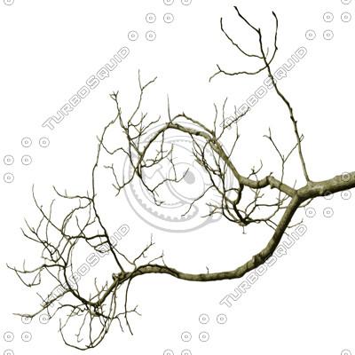 Branch_Euro_5.tga
