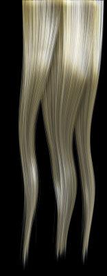 blondeHairTexture_001.tga
