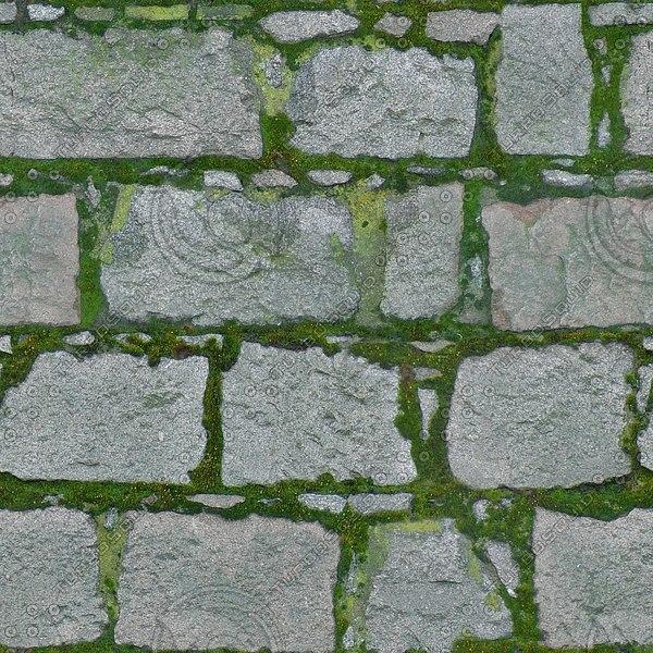 BL149 mossy stone blocks texture