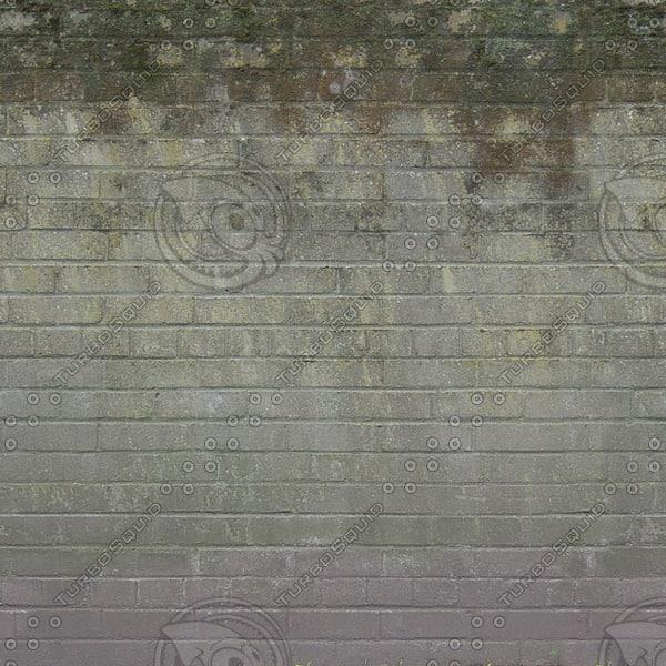 W435 mossy brick wall texture