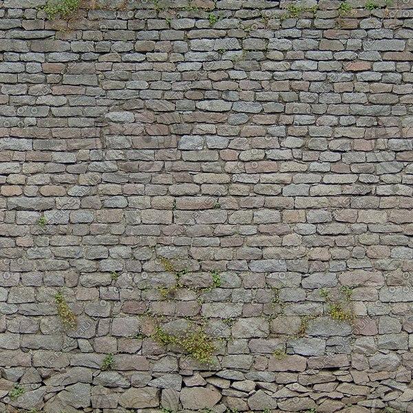 W399 overgrown stone wall
