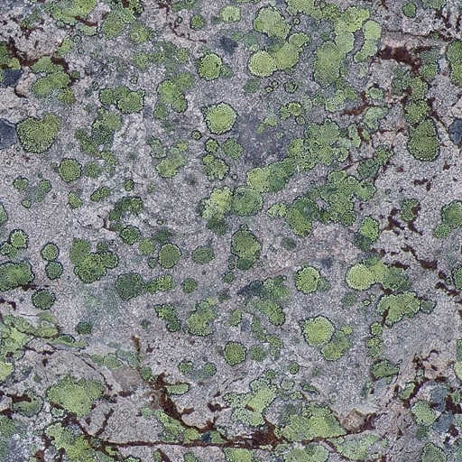 RS073 mossy cracked rock stone