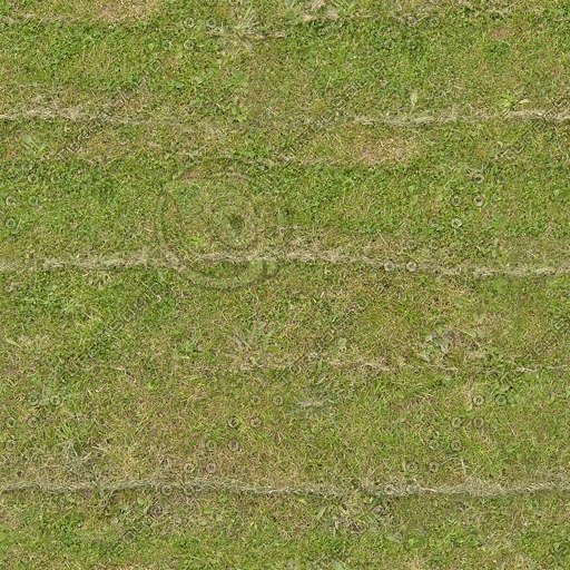 G213 cut grass lawn