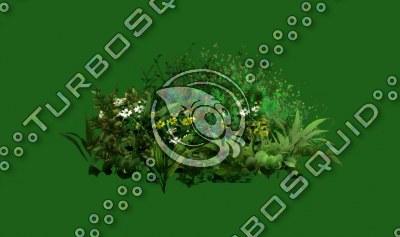 Bush_03.tga