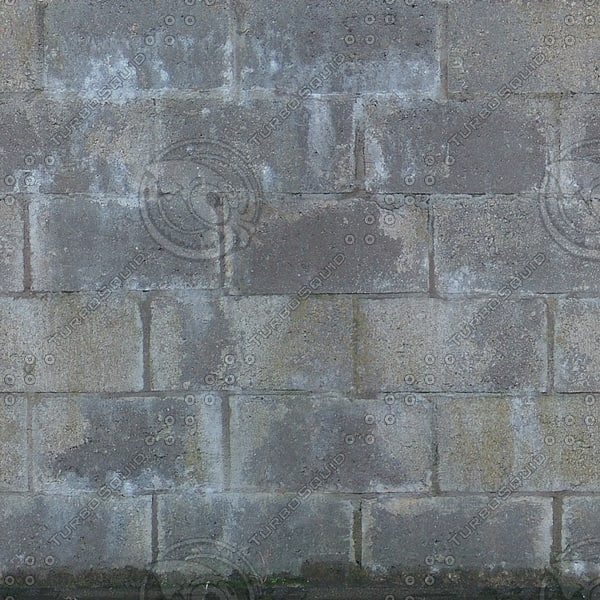 Wall209_1024.jpg