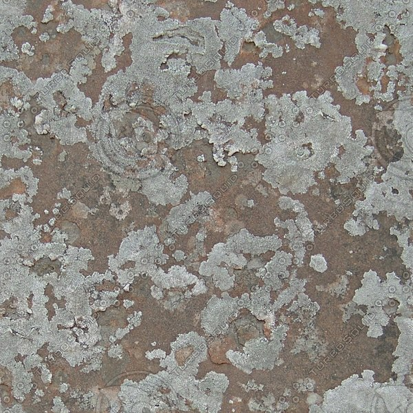 RS129 rock stone texture