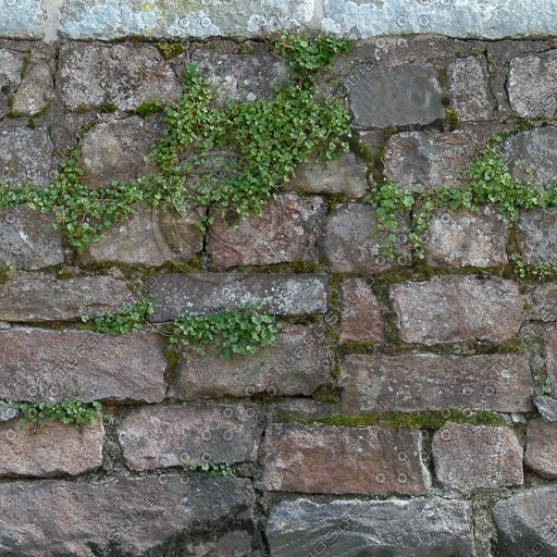W296 overgrown stone wall texture