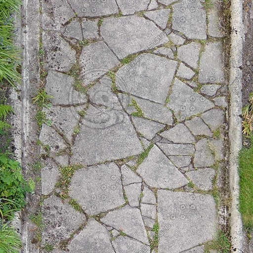 G219 garden path paving