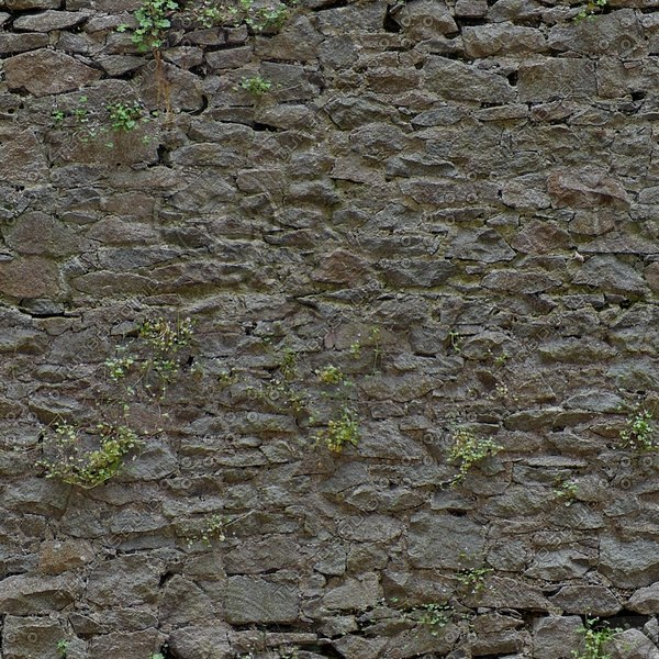 SW025 overgrown stone wall