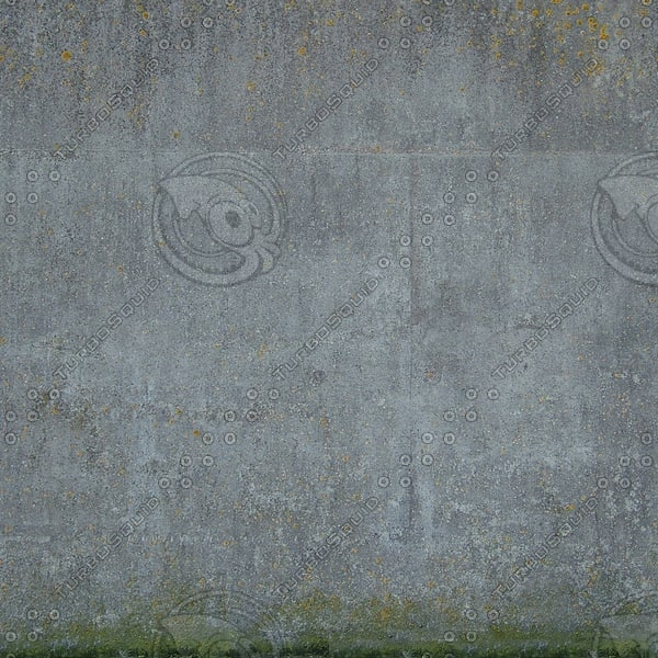 W141 old concrete wall