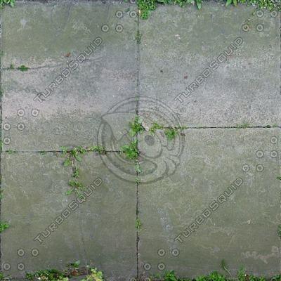 G080 overgrown paving sidewalk slabs texture