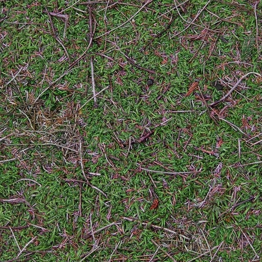 G184 forest floor texture