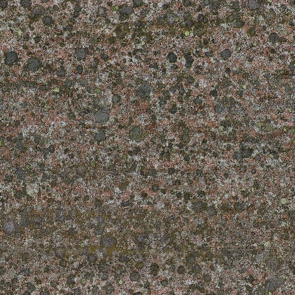 RS047 mossy  rock stone