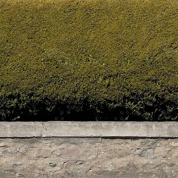 H002 Garden Hedge wall