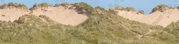 BG029 sand dunes background texture