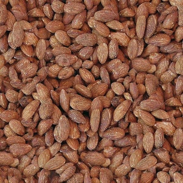 FD003 almonds nuts picture