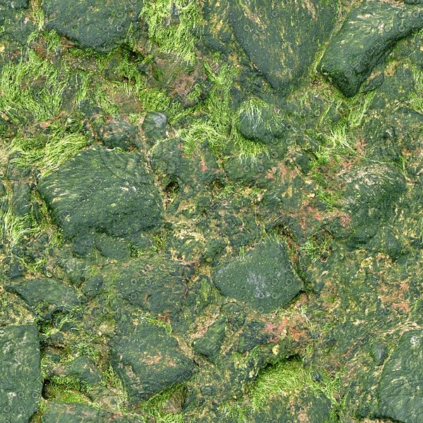 RS111 slimy green rock texture