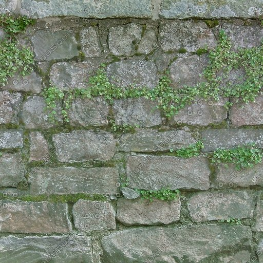 W051 stone wall overgrown texture