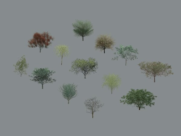 Tree-Deciduous_Collection_Vol-1