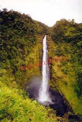 Akaka Falls, Hawaii tex.jpg