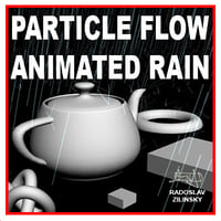 rain particle max