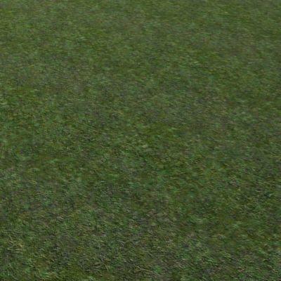 G002 mossy grass ground texture