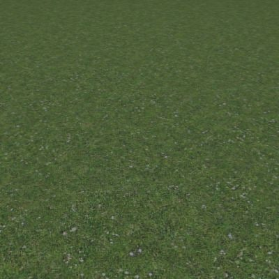 G027 grass lawn turf texture