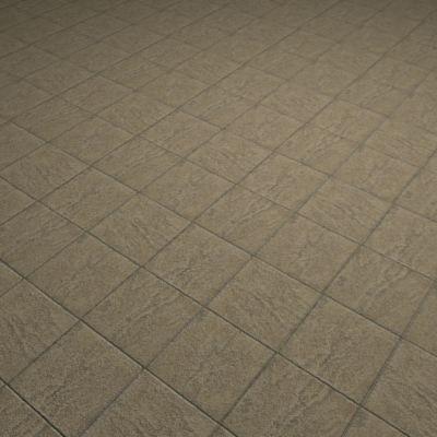 G012b paving stone sidewalk texture