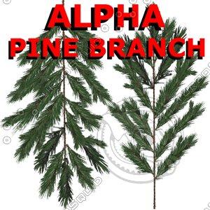 Alpha Channel Pine Tree Branch