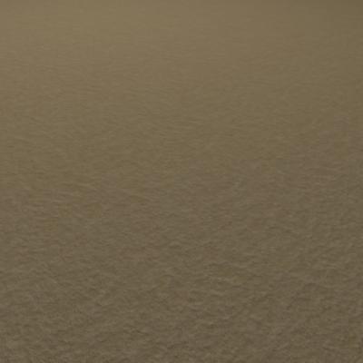 G086 sandy beach sand texture SRF