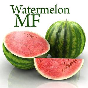 watermelon water melon 3d model